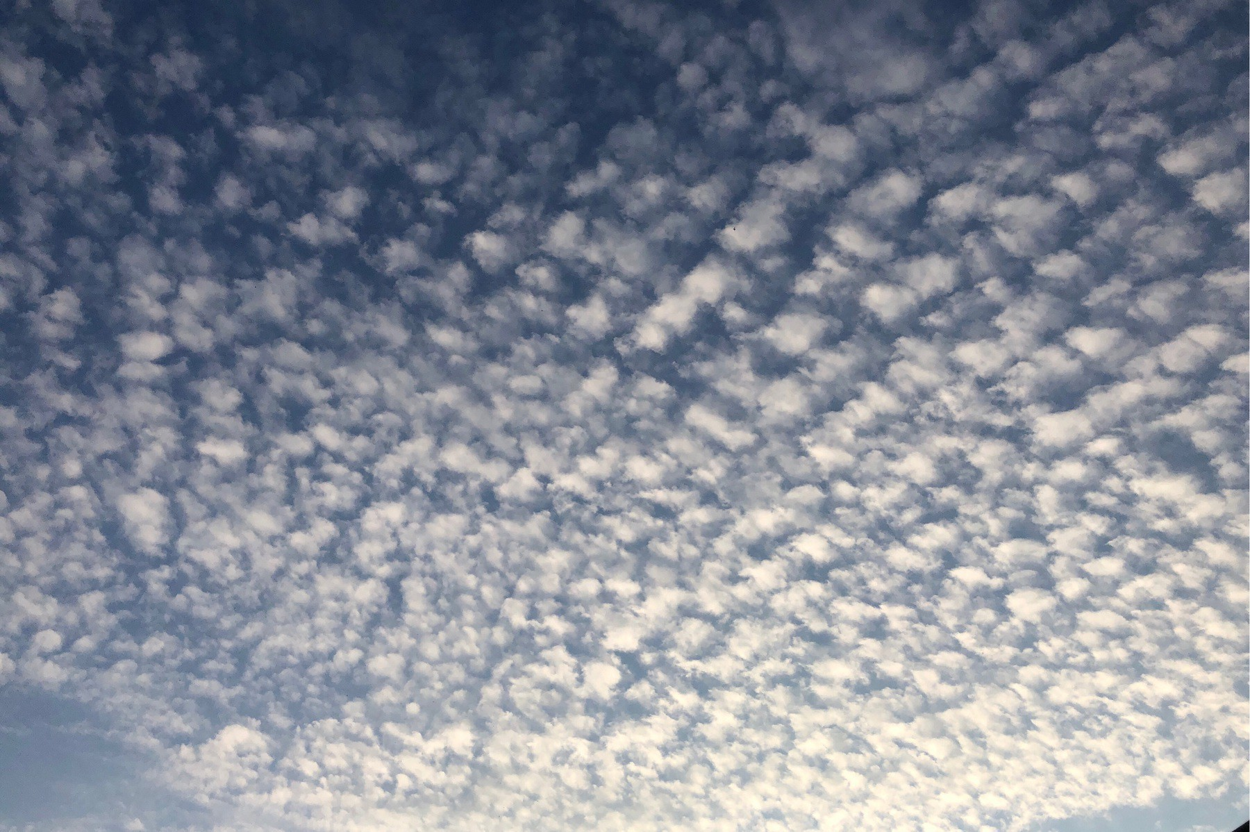 Clouds in evening sky.