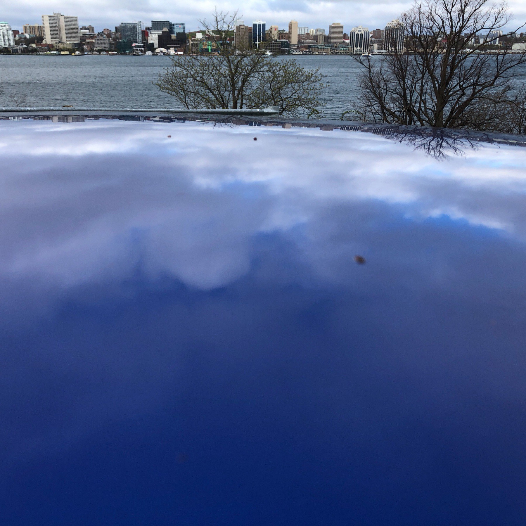 Clouds reflected in car roof.
