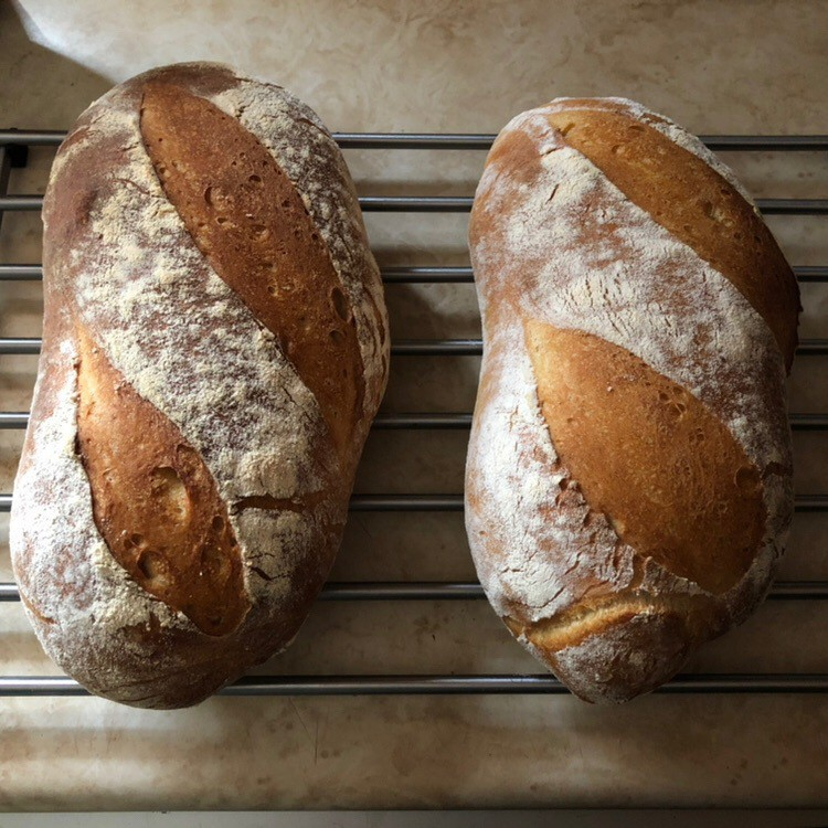 Two loaves of fresh bread.