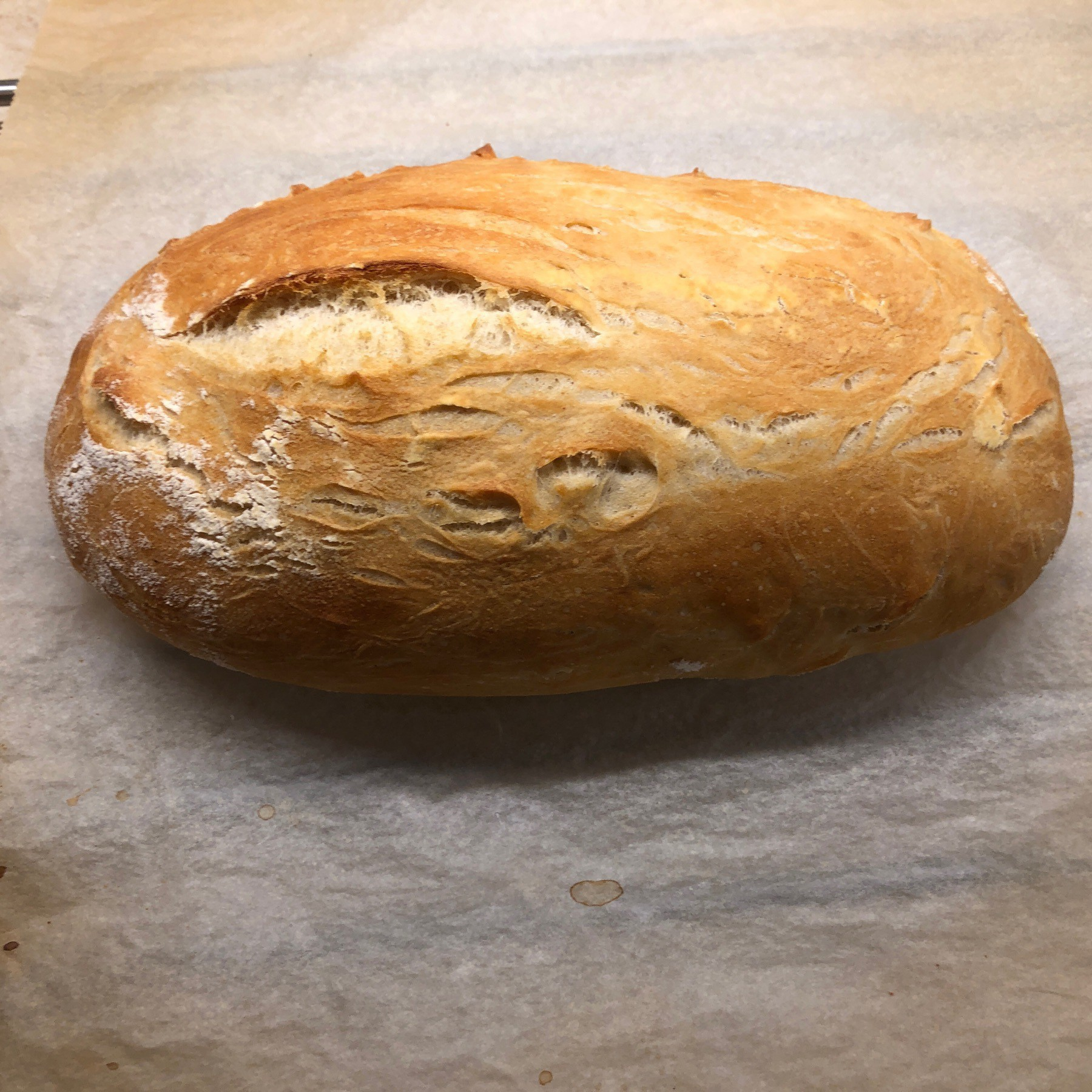 Loaf of rustic bread cooling on parchment paper.