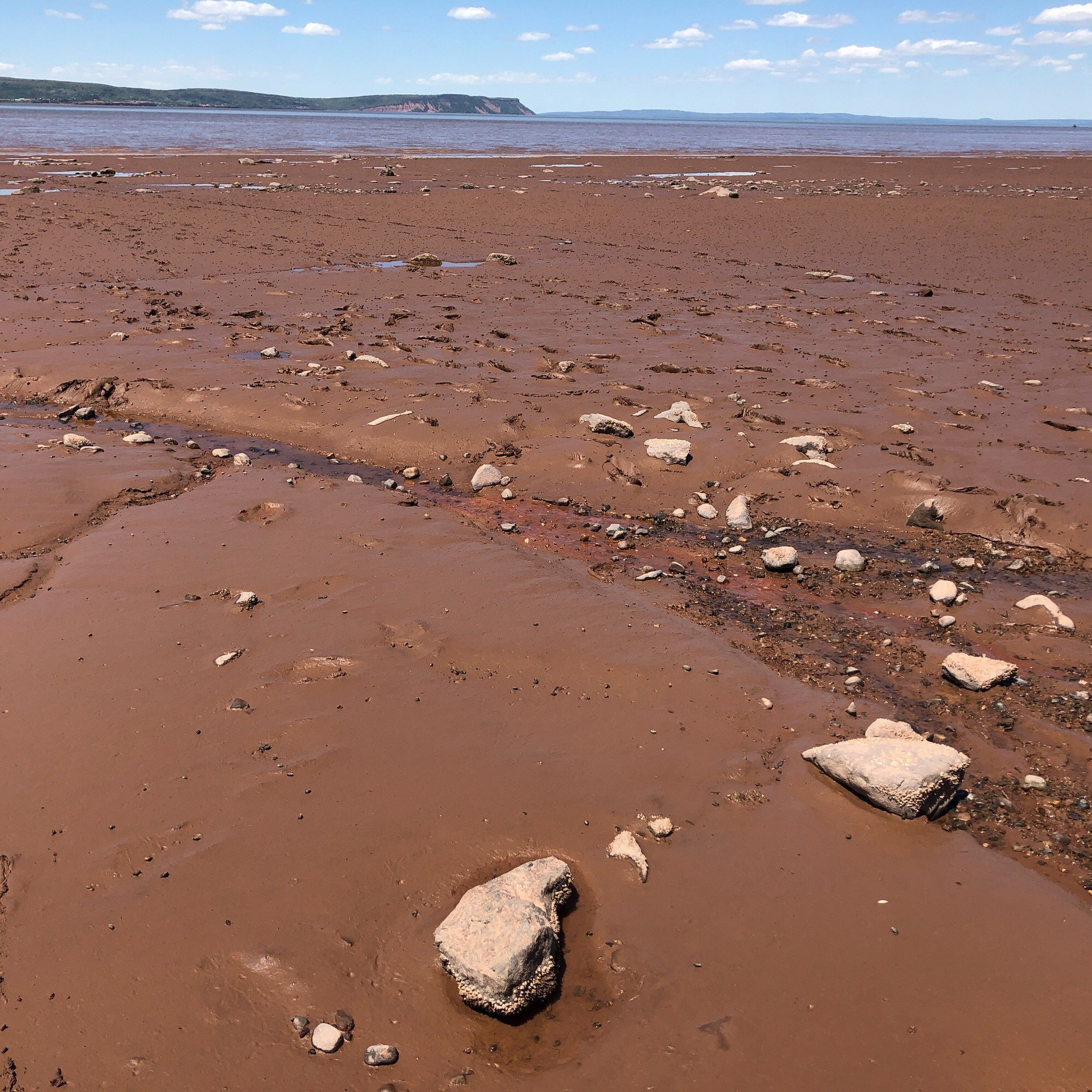 Mud flats and rocks and sky.