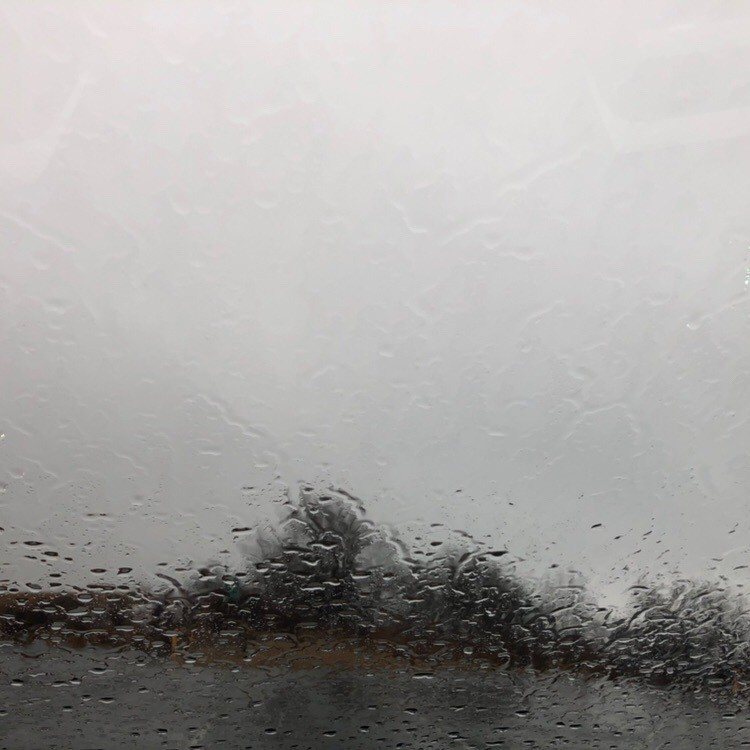 Windshield covered with raindrops.