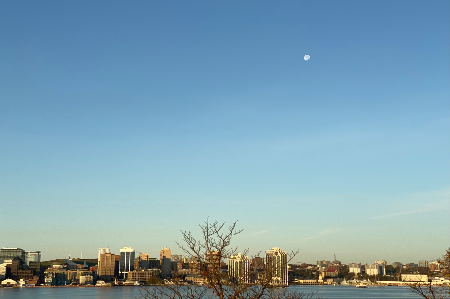 Sky over city with moon visible.