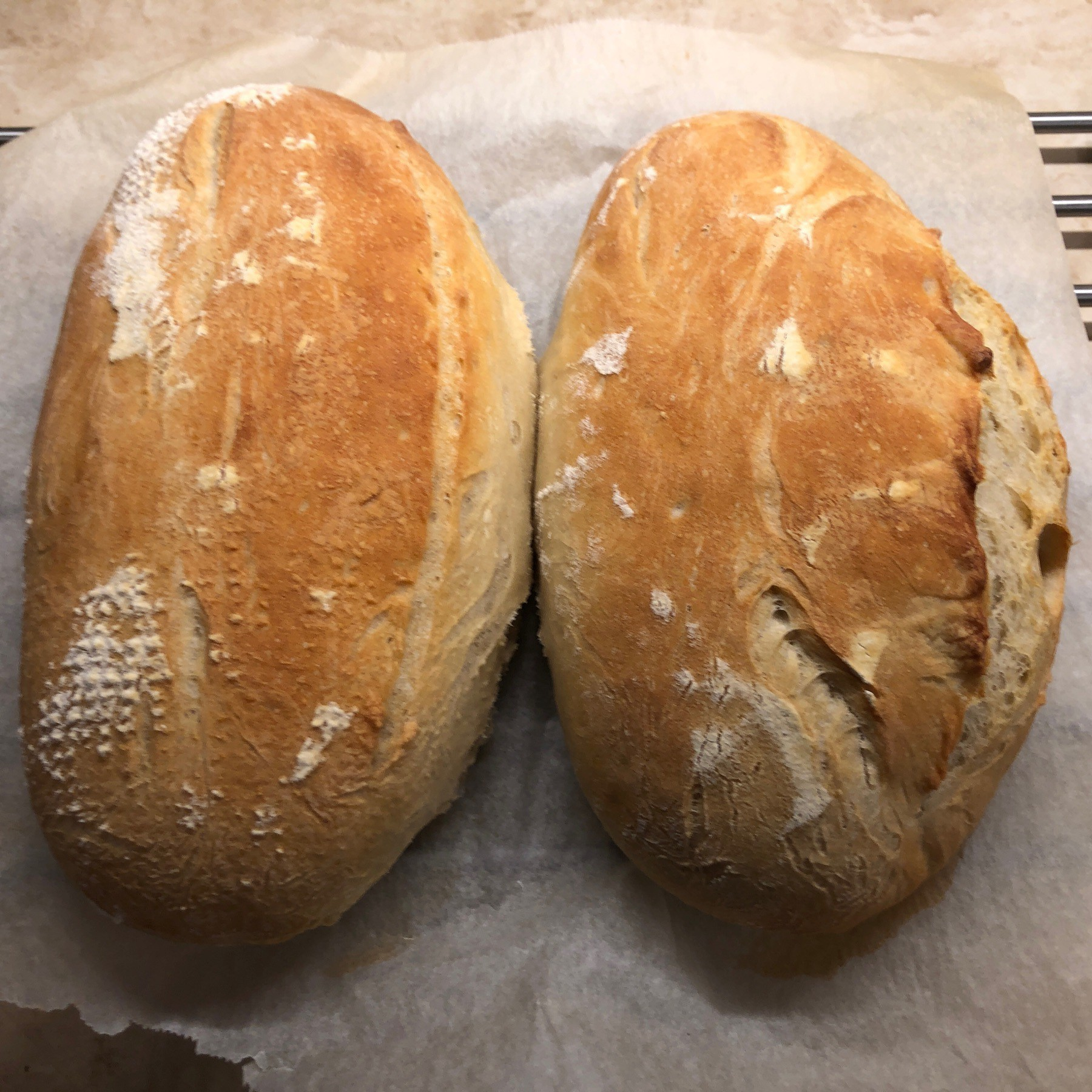 Two loaves of bread cooling on parchment paper.